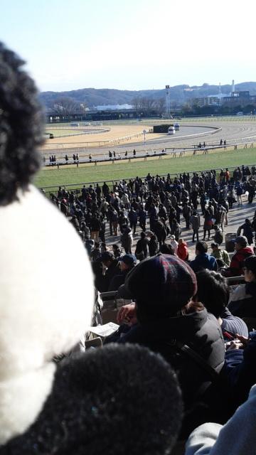馬場に人がたくさん