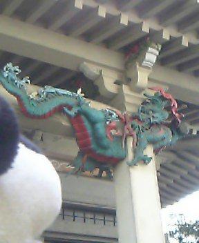 わぉ。ドラゴン