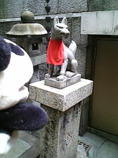 名古屋日記:朝日神社の狐さんI<br />  I