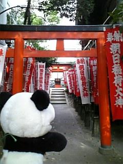 名古屋日記:朝日神社の鳥居