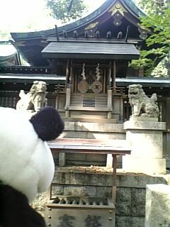 名古屋日記:御神衣神社