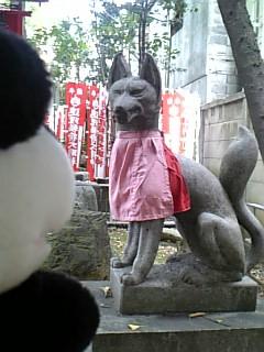 名古屋日記:連理稲荷の狐IV