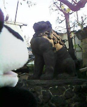 三島神社の狛犬さんII
