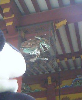 浅草神社の木鼻の獅子