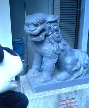 金刀比羅神社の狛犬I