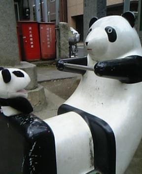 こんぴらさんのパンダと遊ぶ