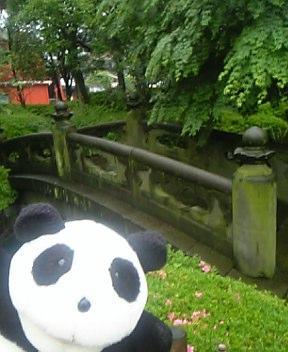 浅草寺の石橋
