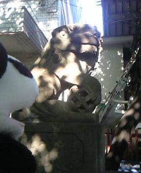 皆中稲荷神社の狛犬さんIII