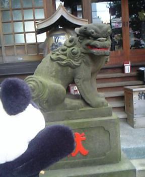 秋葉神社の狛犬さんII